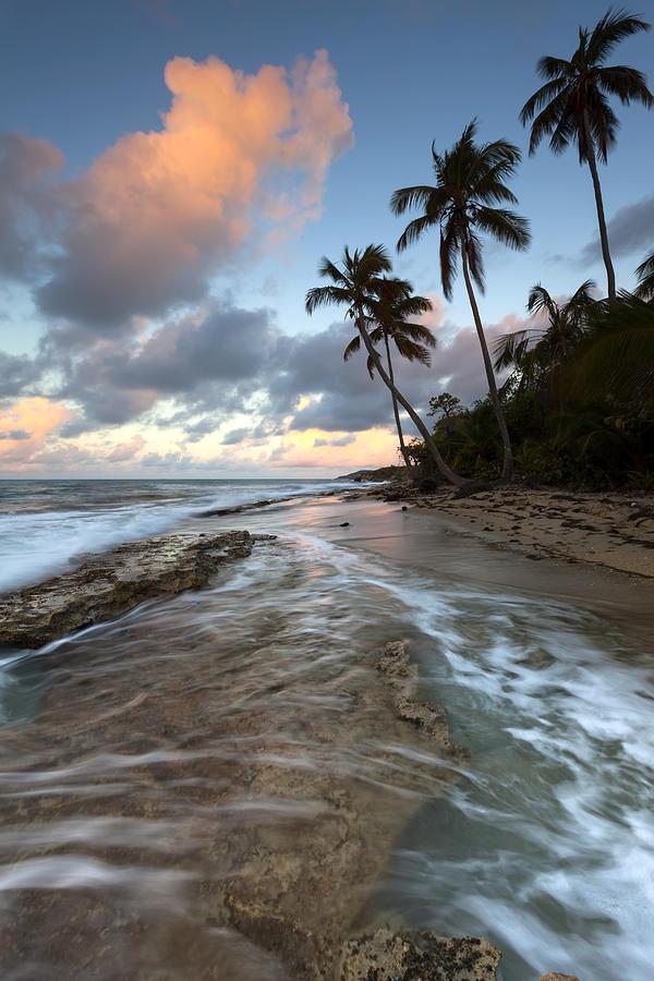 Caribbean Photograph - Caribbean Flow  by Patrick Downey