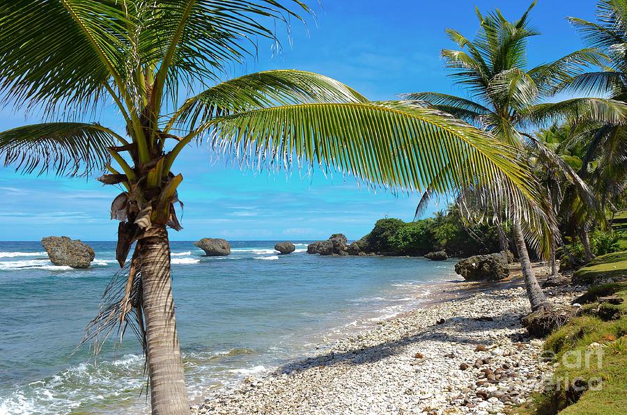 Water Photograph - Caribbean Paradise by Karen English