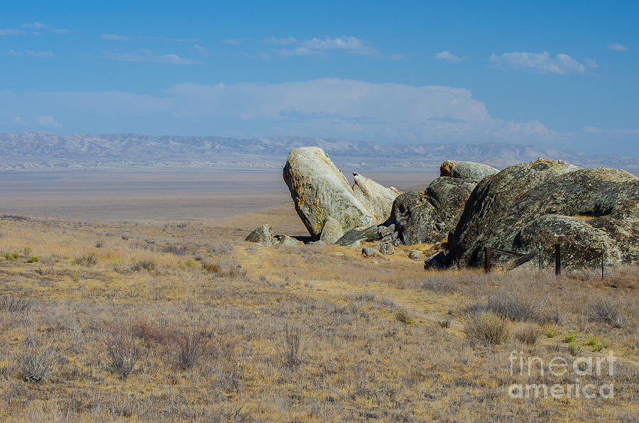 Carizzo Plains Nm  5-9657 Photograph by Stephen Parker