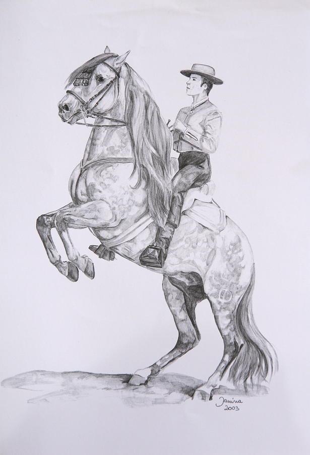 Acrylic Prints Drawing - Carlos On Pensador by Janina  Suuronen