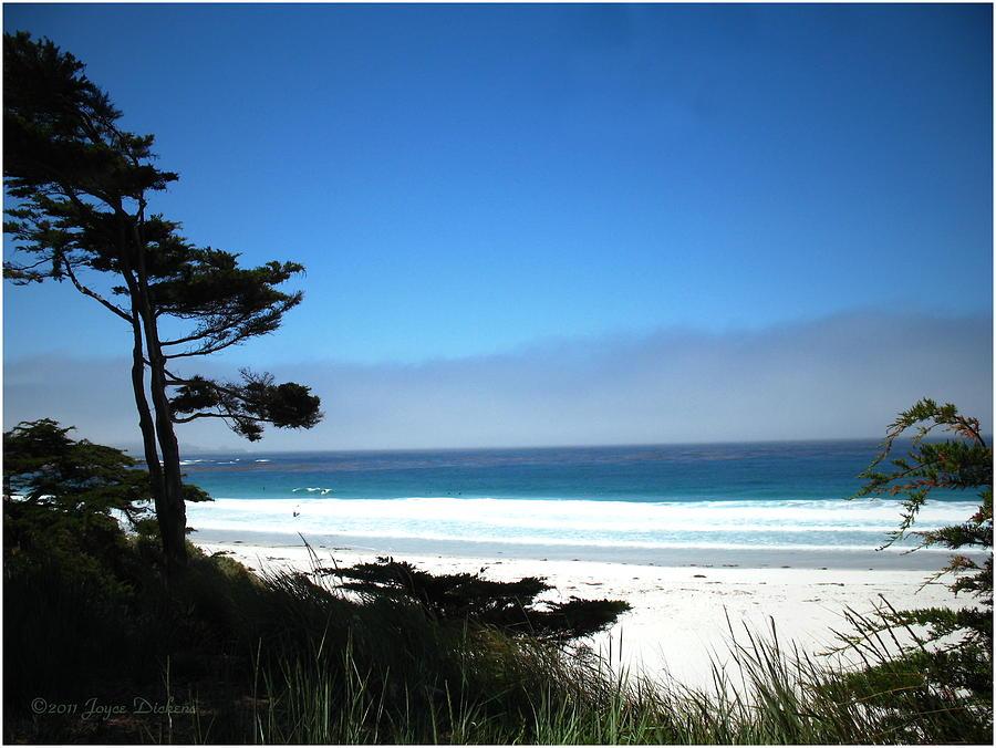 Carmel Beach California Usa Photograph by Joyce Dickens