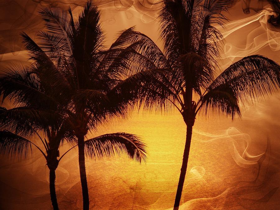 Landscape Photograph - Carmel Sunset by Athala Carole Bruckner
