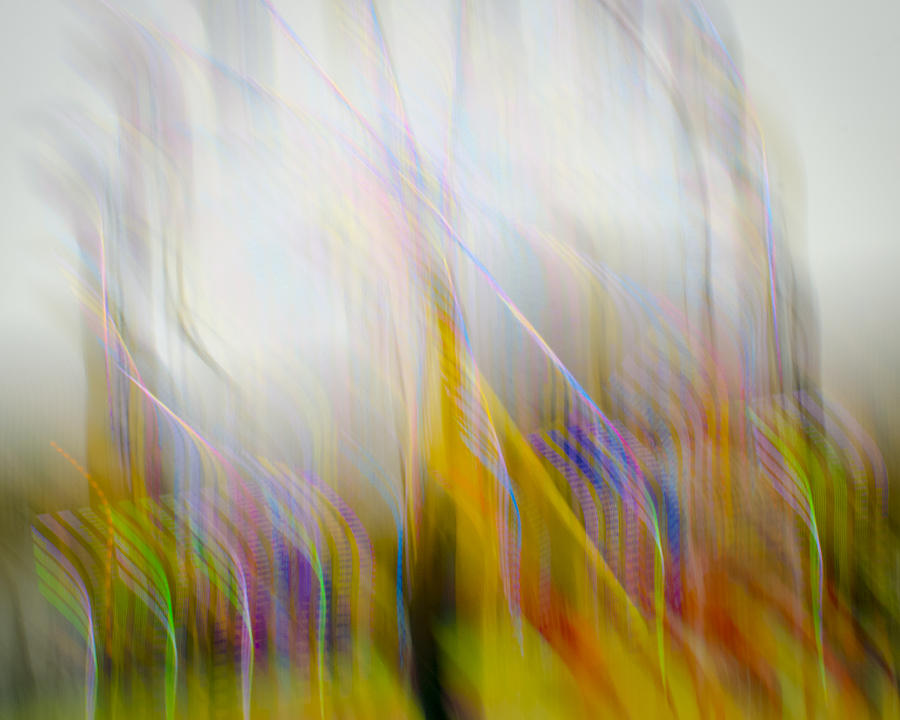 carnival color photograph by art soderholm