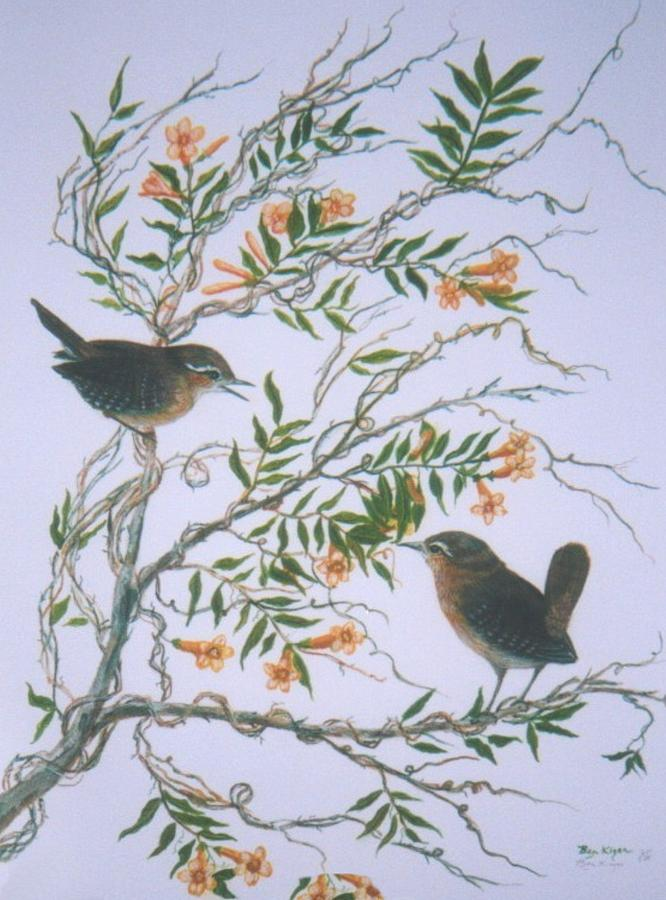 Carolina Wren And Jasmine Painting by Ben Kiger
