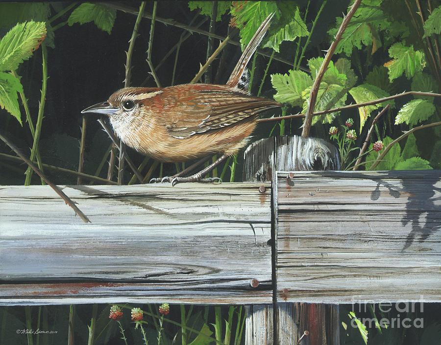 Carolina Wren Painting - Carolina Wren by Mike Brown