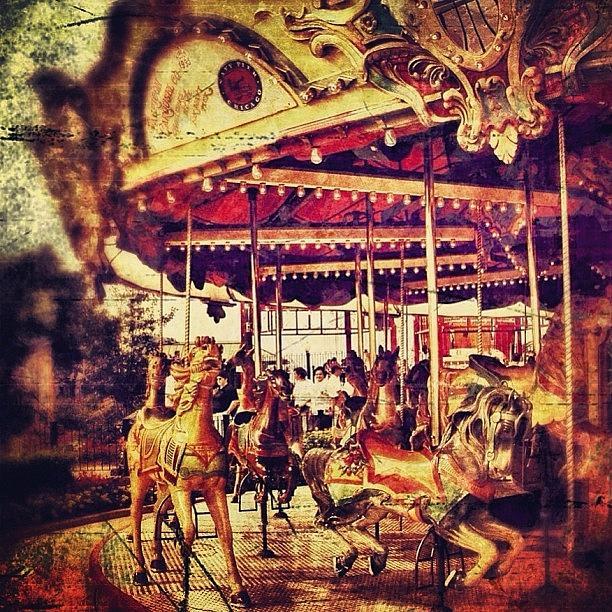 Horse Photograph - #carousel #ride #fun #amusement #horse by Jill Battaglia