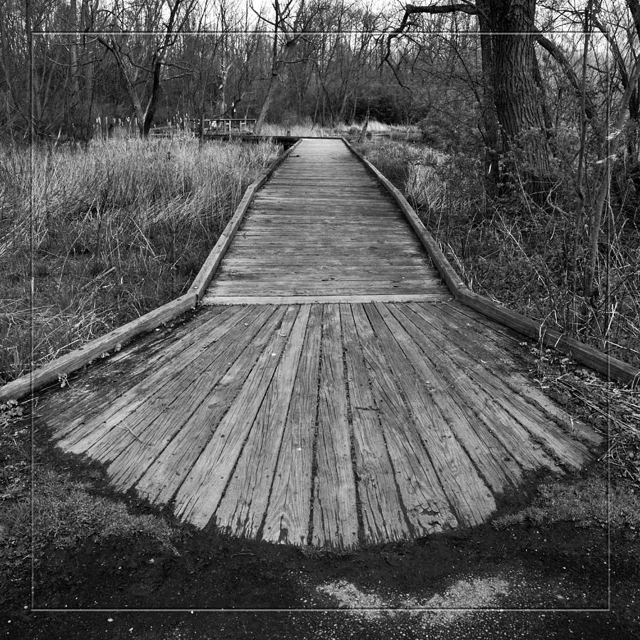 B&w Photograph - Carriage Hill Boardwalk A by Robert Clayton