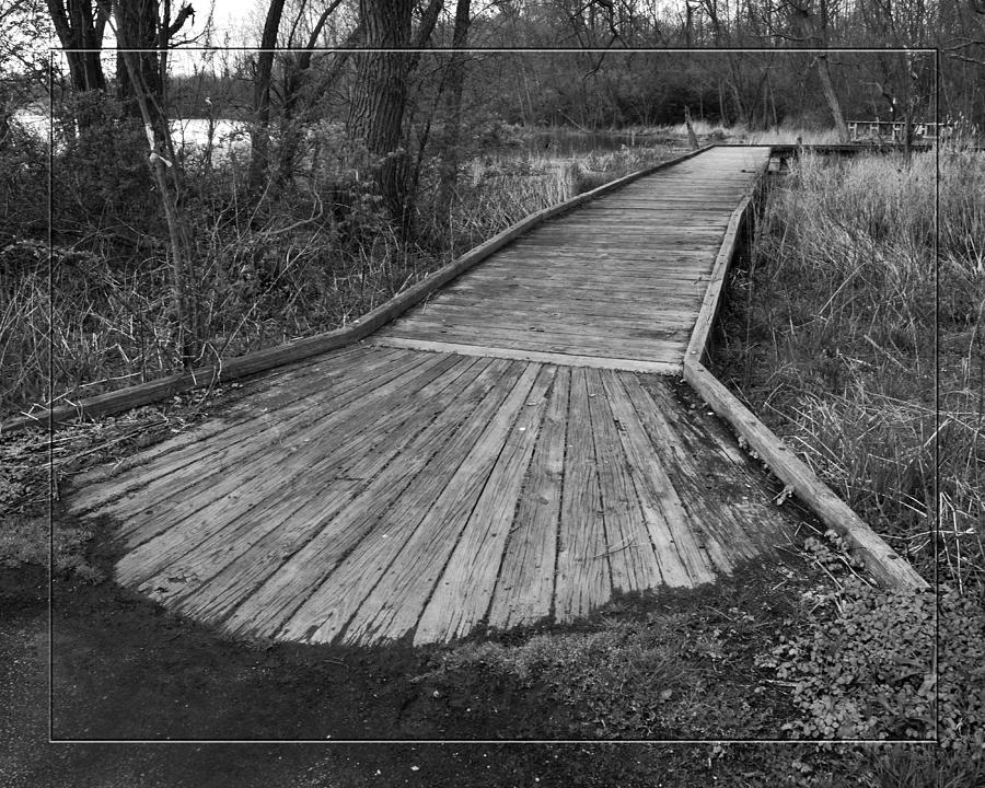Boardwalk Photograph - Carriage Hill Boardwalk B by Robert Clayton