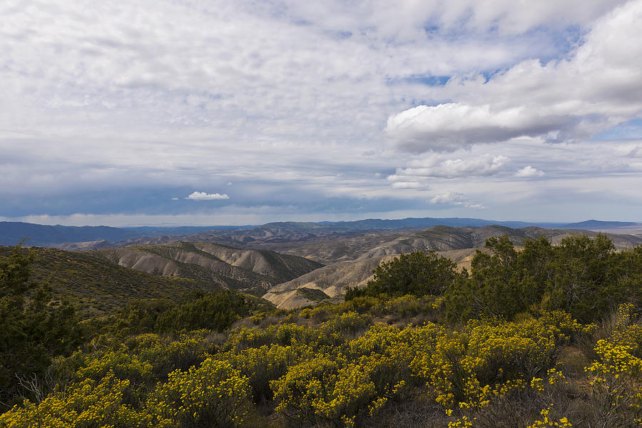 Carrizo Plains National Monument Photograph - Carrizo Canyon by Mike Herdering