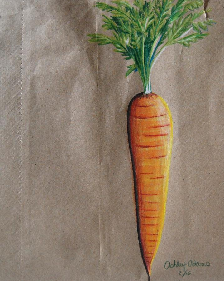 Carrot Drawing Drawing By Ashley Adams