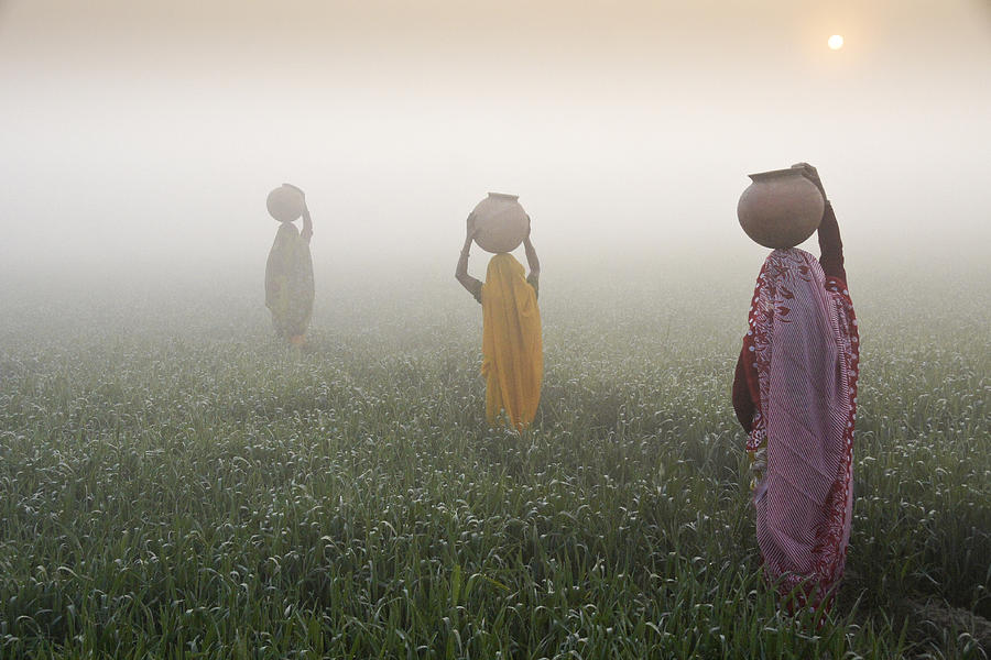 Asia Photograph - Carrying Water On A Foggy Morn In India by Michele Burgess