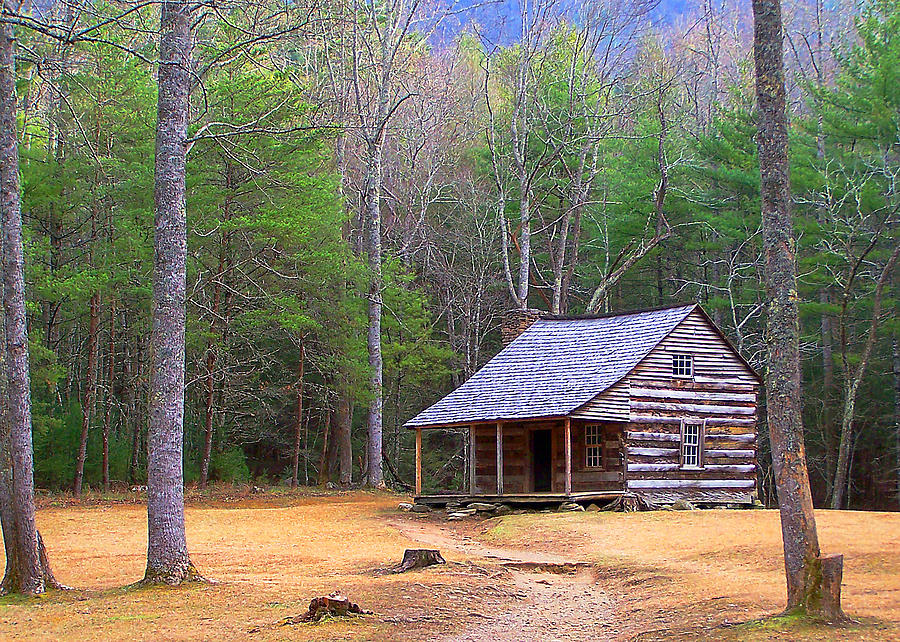 America Photograph - Carter Shields Cabin II by Jim Finch