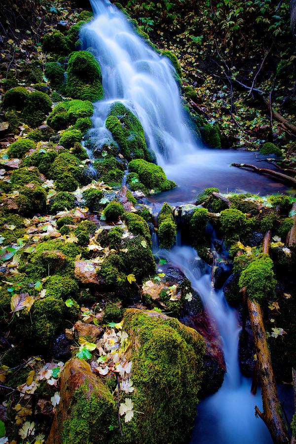 Landscape Photograph - Cascade Creek by Chad Dutson