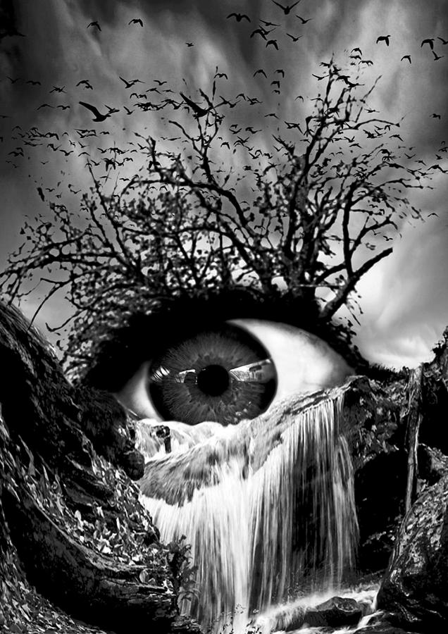 Cascade Crying Eye Grayscale Digital Art By Marian Voicu