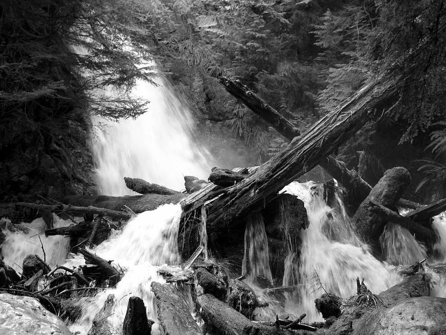 Cascade Log Jam - Mountain Waterfall - British Columbia - Black And White Photograph