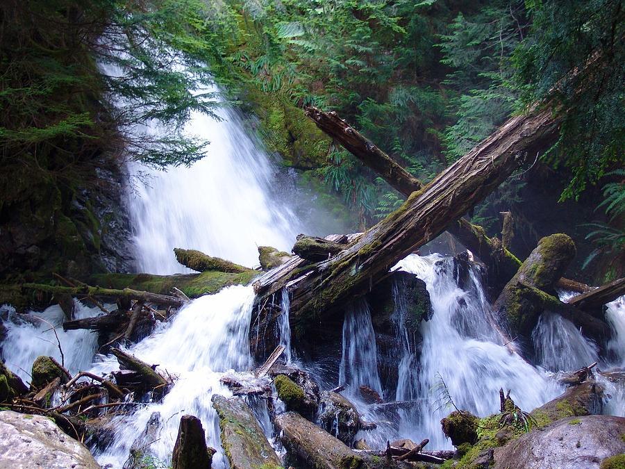Cascading Log Jam - Mountain Waterfalls Photograph