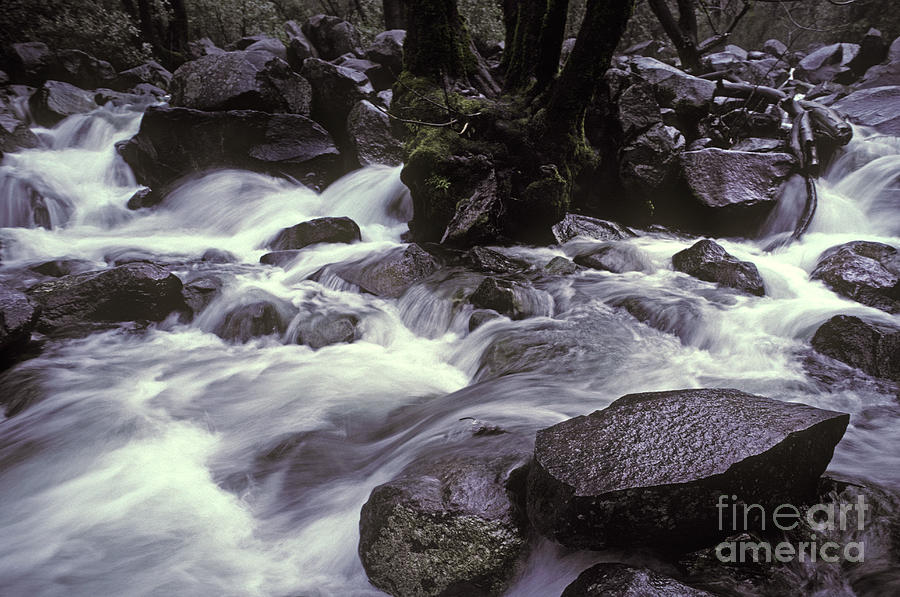 Landscape Photograph - Cascade by Ron Sanford