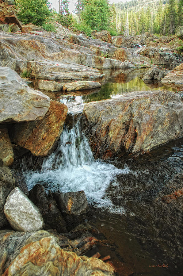 Cascading Downward Photograph by Donna Blackhall