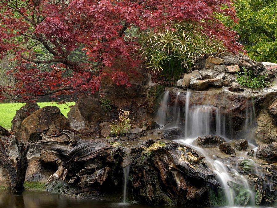 Cascading Photograph - Cascading Waterfall by Doug Dailey