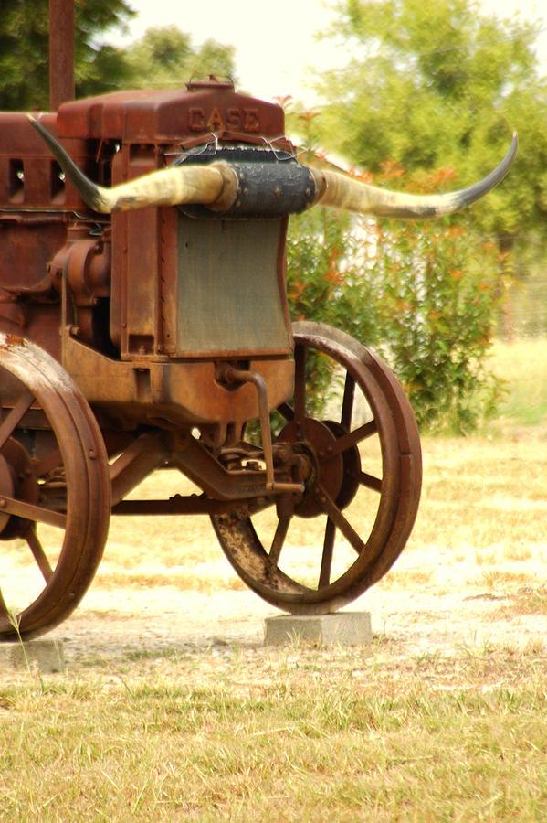 Case Longhorn 14389 Photograph