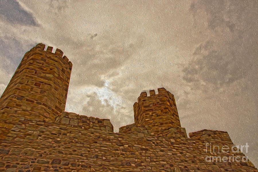 Castle Photograph - Castle  by Nur Roy