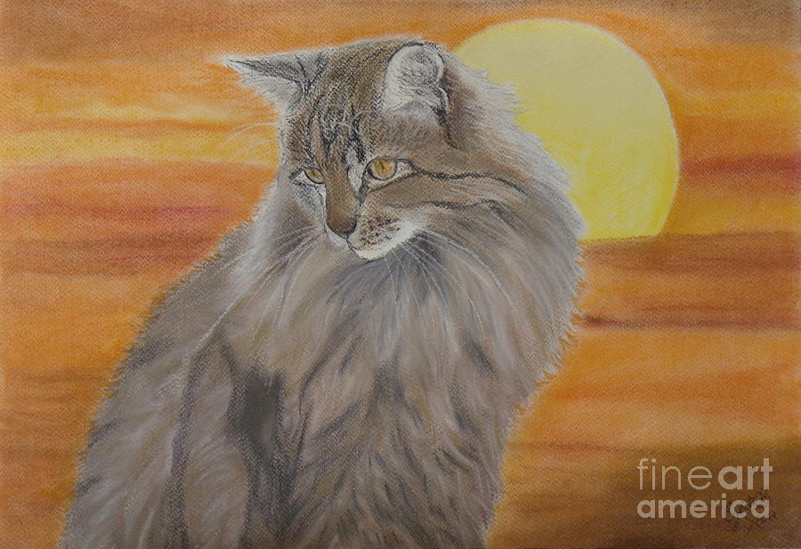 Cat Painting - Cat And Sunset  by Cybele Chaves