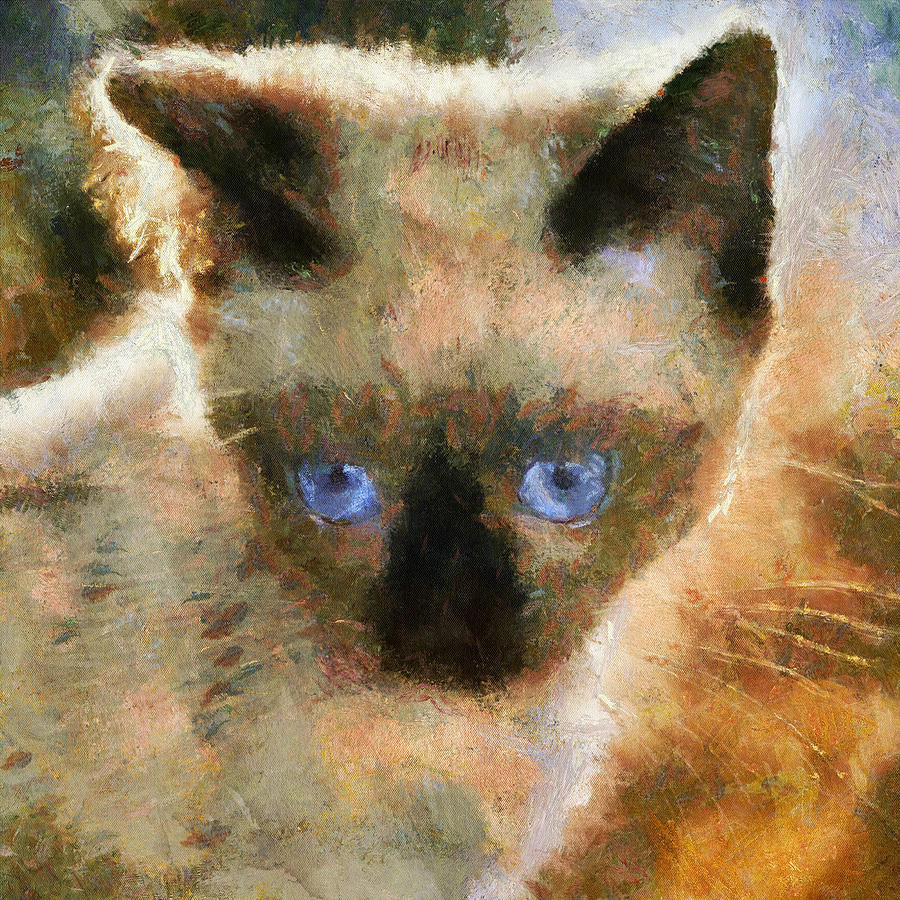 Kitty Digital Art - Cat Blue Eyes by Yury Malkov