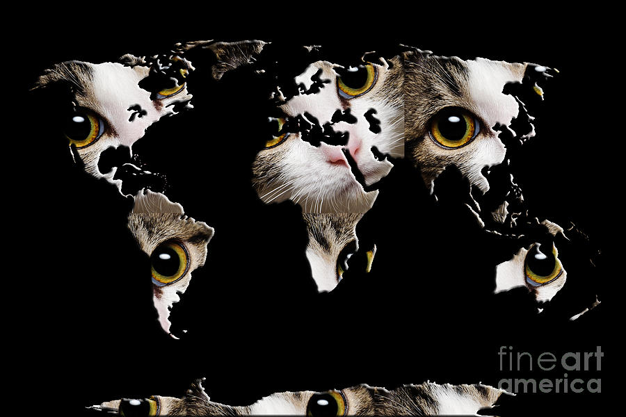 Cat Eyes World Map 2 Photograph by Andee Design