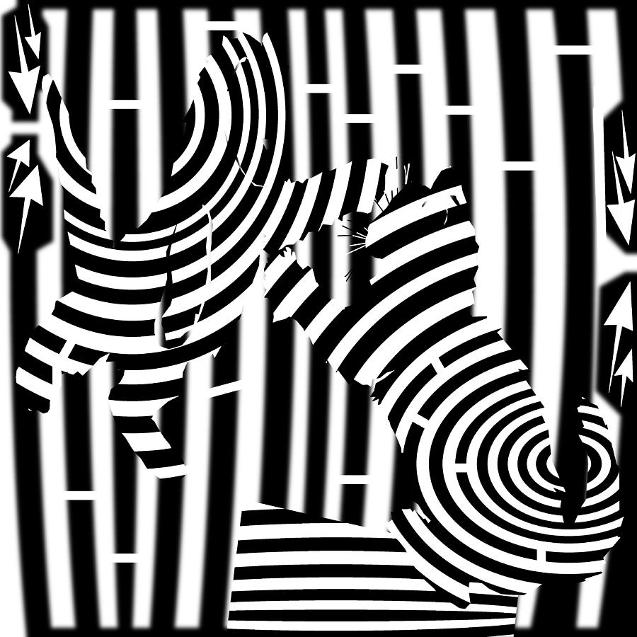 Maze Digital Art - Cat Fight Maze by Yonatan Frimer Maze Artist
