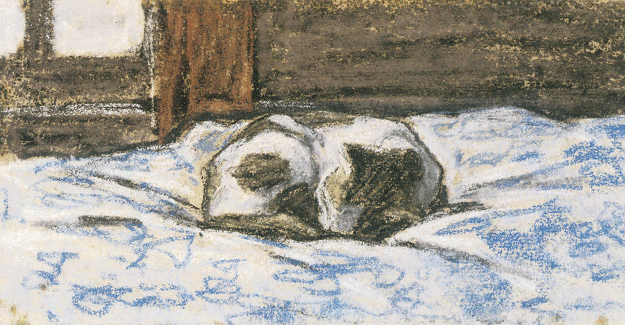 Cat Painting - Cat Sleeping on a Bed by Claude Monet
