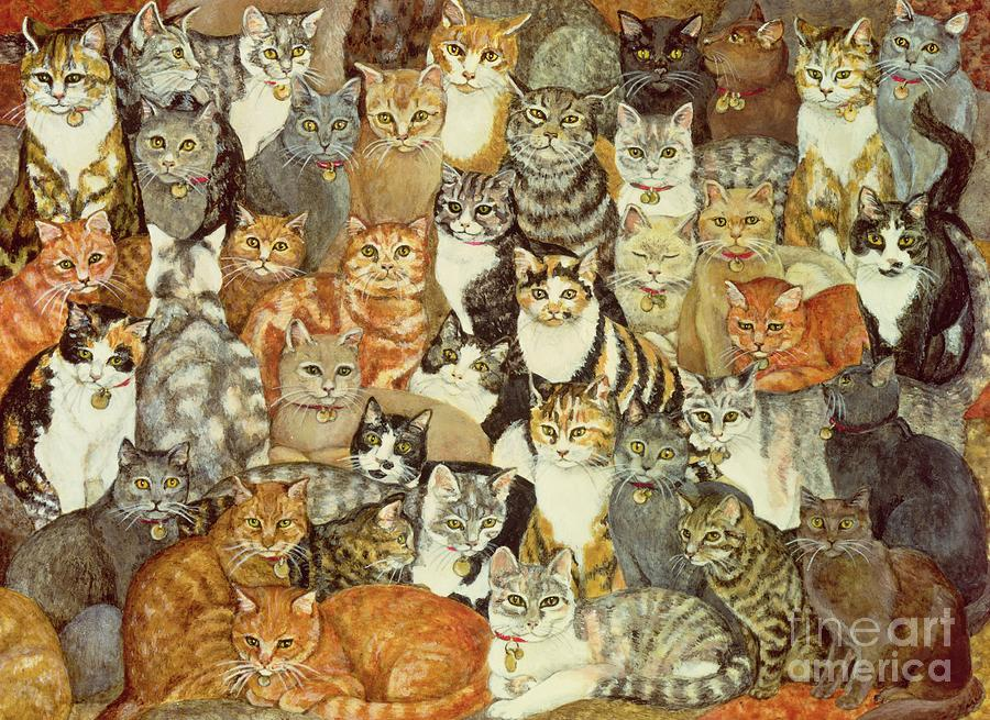 The Best Drawings Of Cats