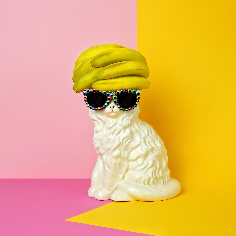 Statue Photograph - Cat Wearing Sunglasses And Banana Wighat by Juj Winn