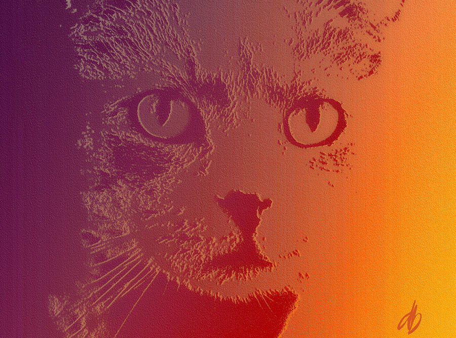Cat Photograph - Cat With Intense Stare Abstract  by Denise Beverly