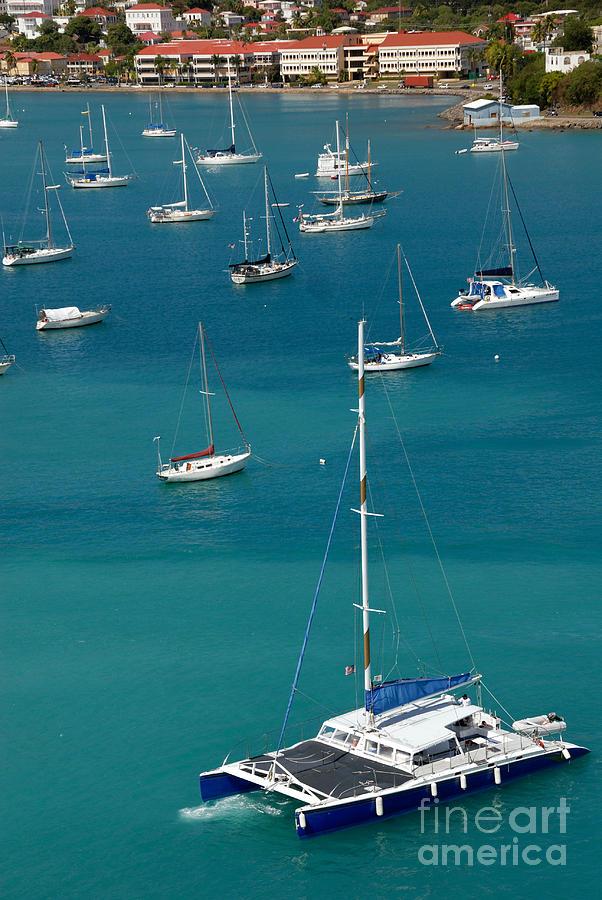 Azure Photograph - Catamaran  St Thomas Usvi by Amy Cicconi