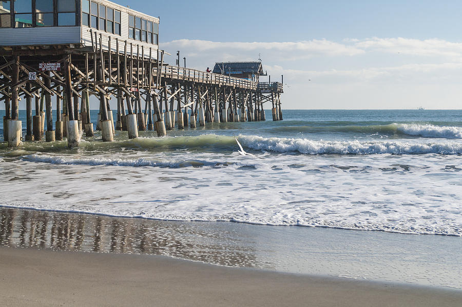 Beaches Photograph - Catch Of The Day by Brian Harig