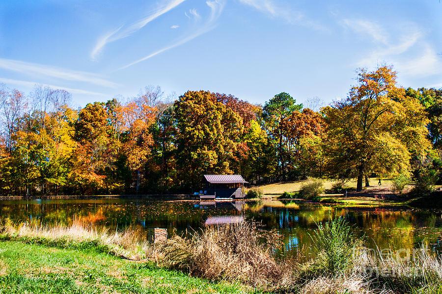 Fall Color Prints Digital Art - Catch Your Breath by Jinx Farmer