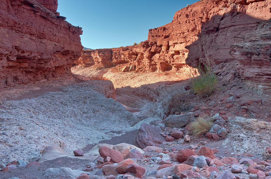 Scenic Photograph - Cathedral Canyon Near Lees Ferry by Witold Skrypczak
