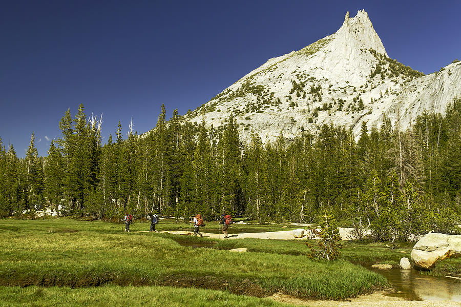 Cathedral Lakes-yosemite Series 17 Photograph by David Allen Pierson