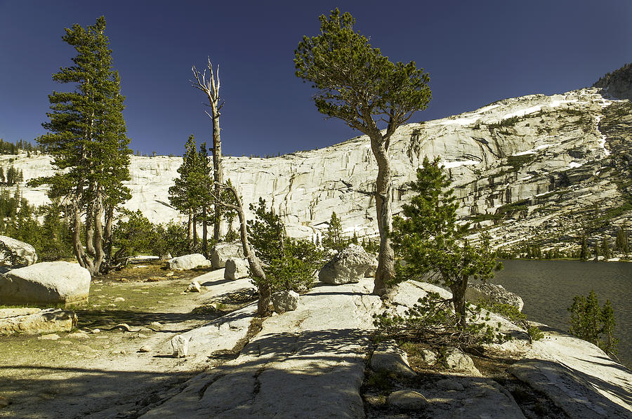 Cathedral Lakes-yosemite Series 20 Photograph by David Allen Pierson