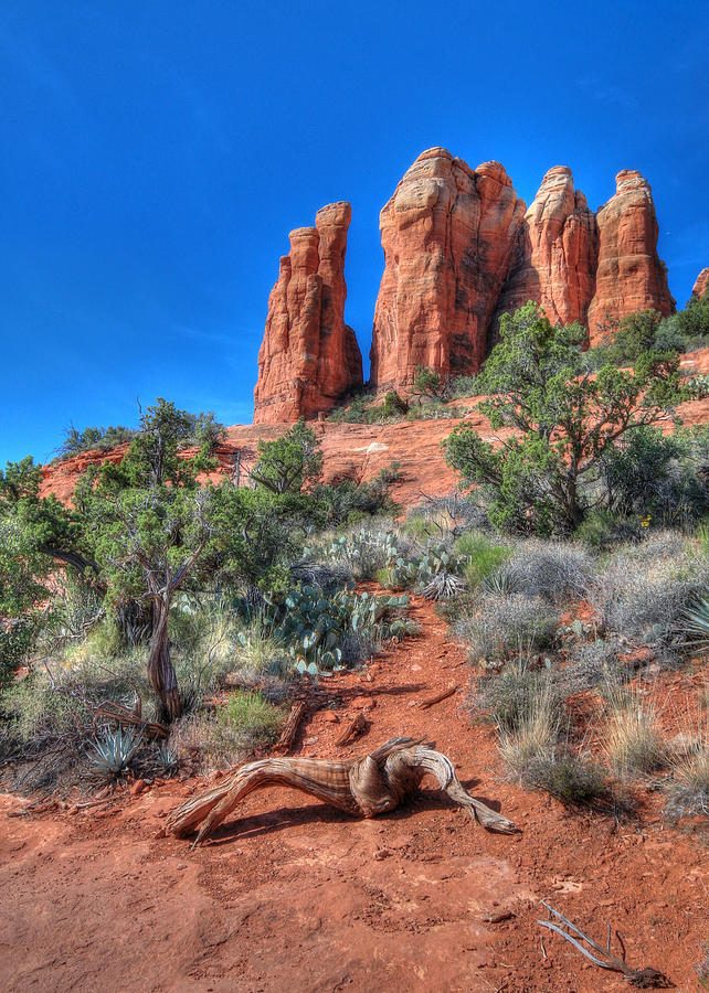 Cathedral Rock Photograph - Cathedral Rock by Lori Deiter