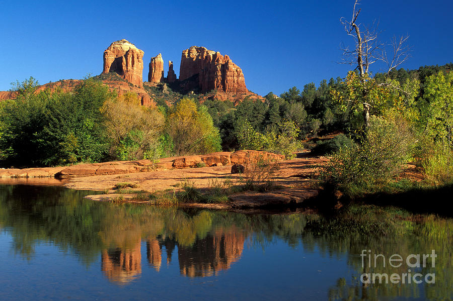 Cathedral Rock Photograph - Cathedral Rock by Mark Newman