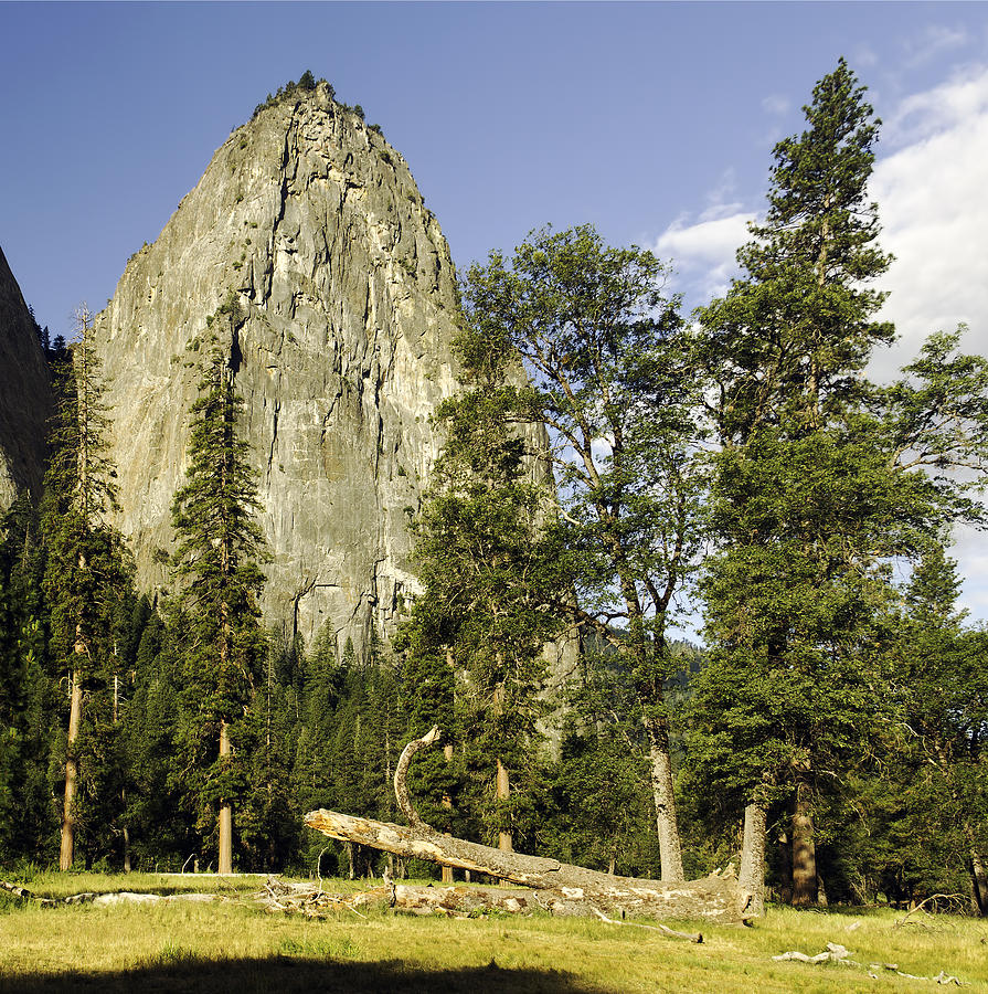 Cathedral Spires-yosemite Series 04 Photograph by David Allen Pierson