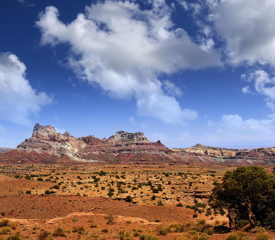 Cathedral Photograph - Cathedral Wash by Don and Bonnie Fink