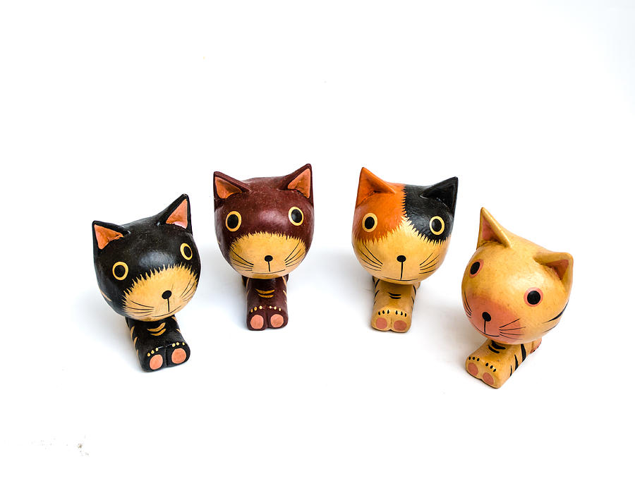 Background Photograph - Cats Doll by Suntasit Fhakthap