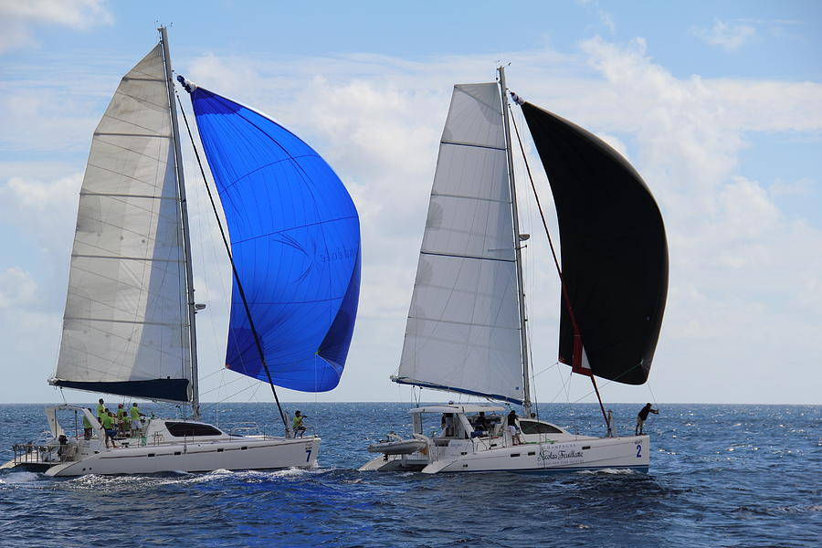 Catamaran Photograph - Cats With Spinnakers by Debbie Cundy