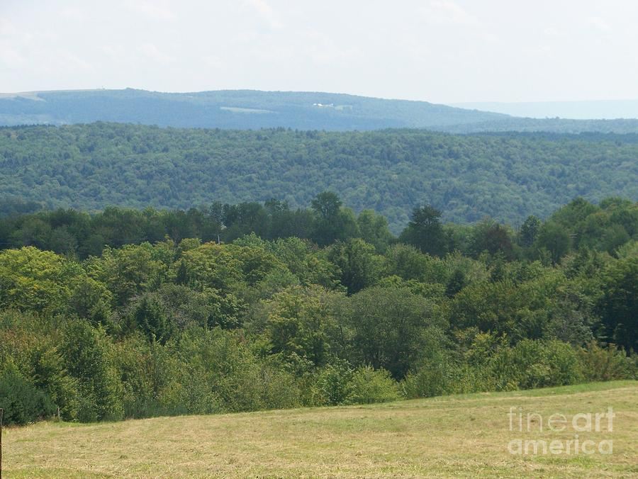 Catskill Mountains Photograph - Catskill Rolling Hills by Kevin Croitz