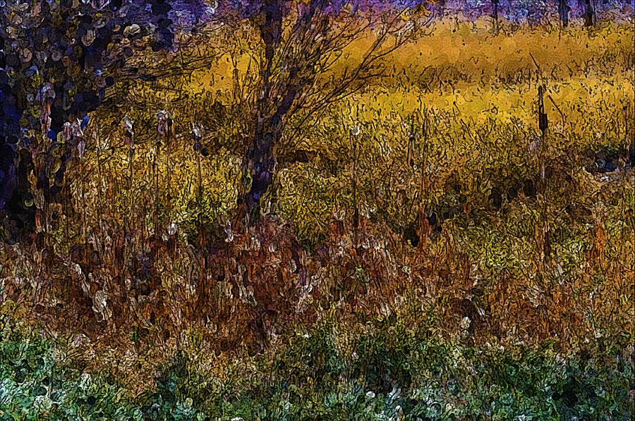Cattails in Molly's Field by Lisa Holland-Gillem
