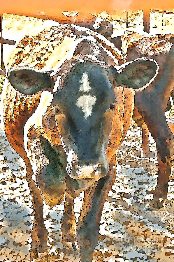Cattle Photograph - Cattle Round Up by Artist and Photographer Laura Wrede