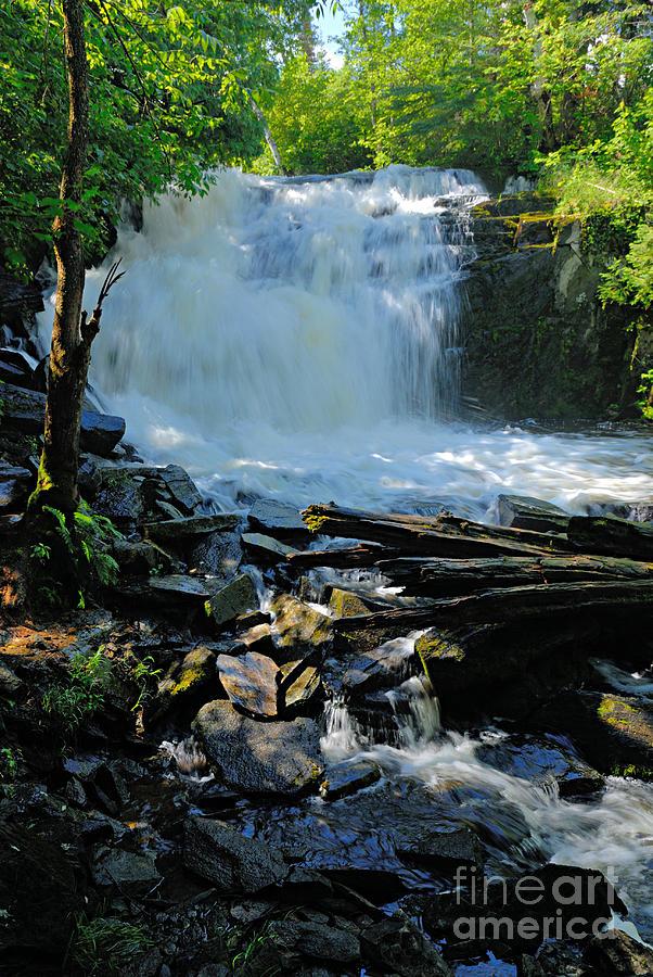 Nature Photograph - Cattyman Falls 2 by Larry Ricker