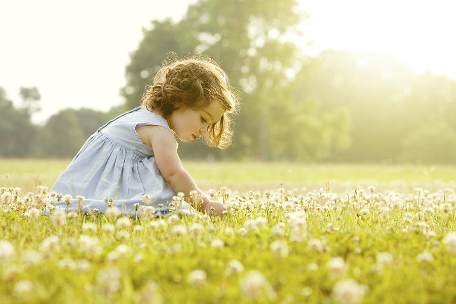 Caucasian girl picking flowers in field Photograph by John Fedele